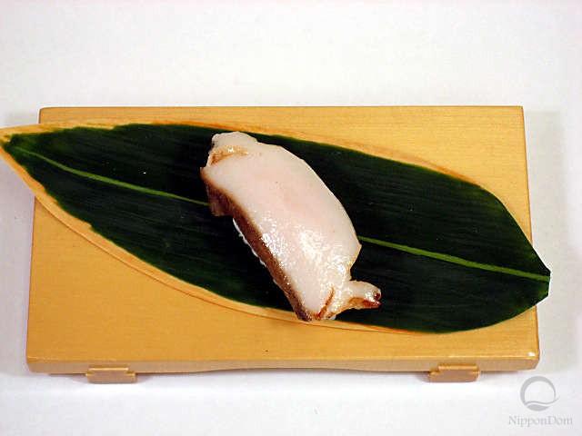 Abalone-3