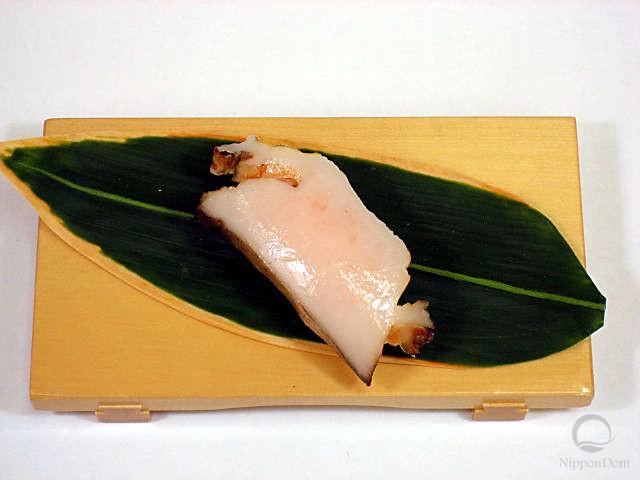 Abalone-5