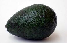 Avocado (small)