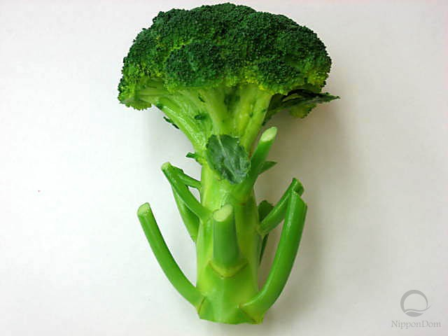 Broccoli (115/165mm)