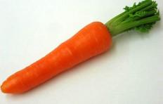 Carrot (50/190mm)