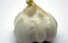 Муляж чеснока (66/ 60 мм)