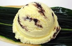Chocolate chip vanilla -2