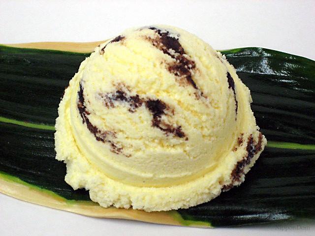Chocolate chip vanilla ice cream-2