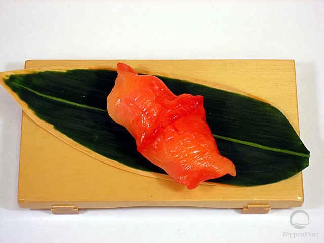 Ark clam-4