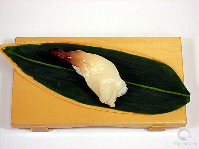 Surf clam (raw)