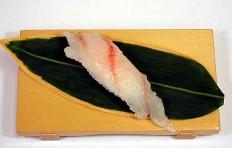Replica of sushi Flounder (8)