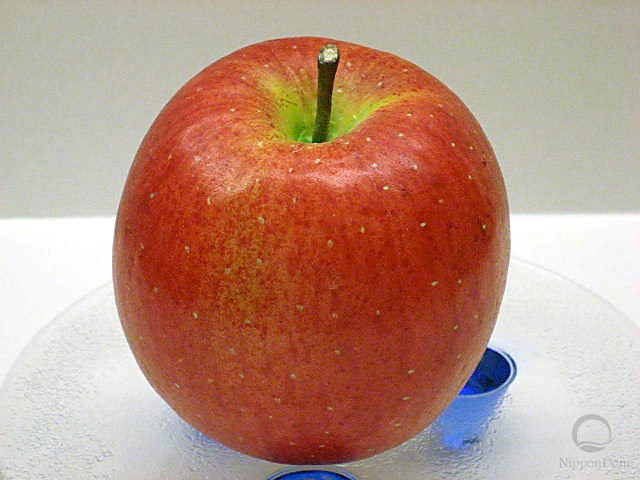 Fuji apple (small)