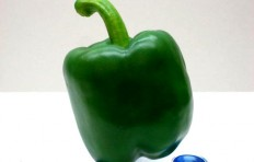 Green pepper (80/75mm)