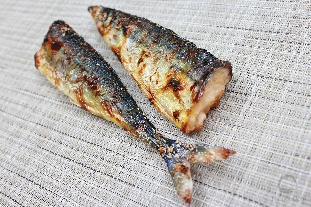 Grilled Pacific saury-2