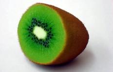 Half-cut kiwi