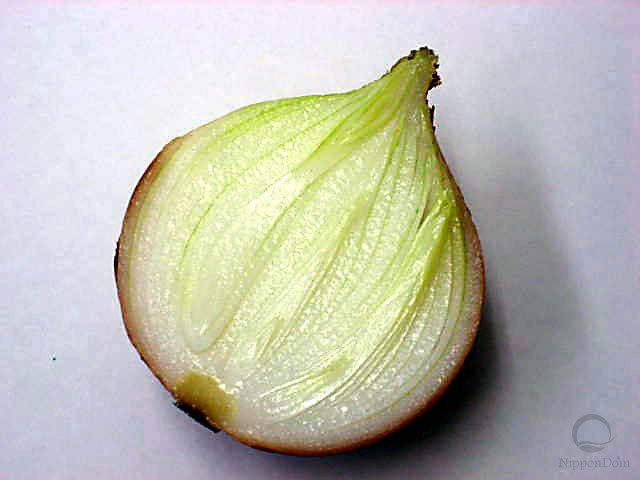 Half-cut onion (84/100/40mm)