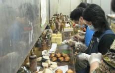 Plastic food production: Factory tour