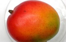 Муляж мексиканского манго (132/ 90 мм)