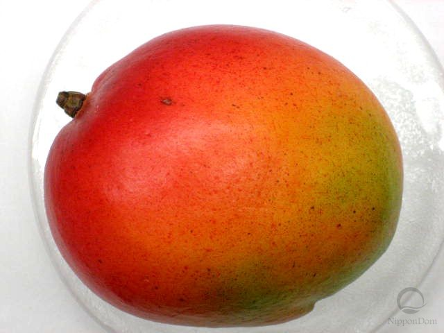 Mexican mango (large)