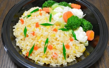 Plastic replica of Rice with Vegetables