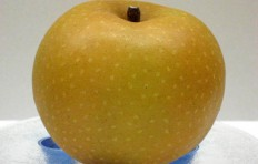 Pear-apple (Nashi)-2