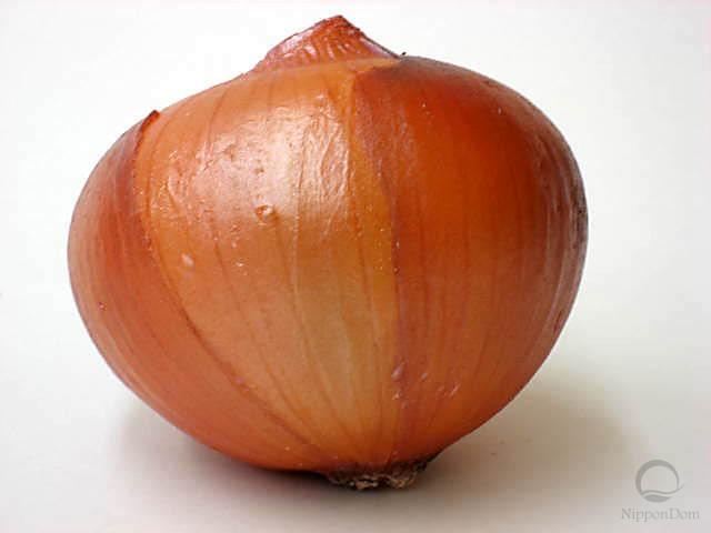 Onion (100/90mm)
