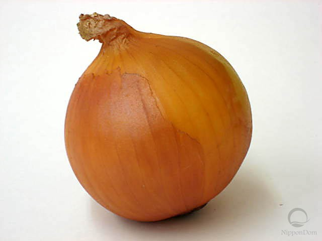 Onion (80/85mm)