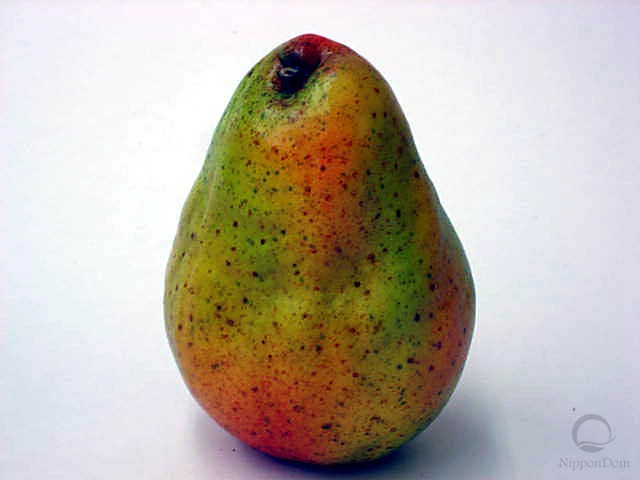 Pear-3