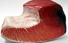 A piece of tuna-1