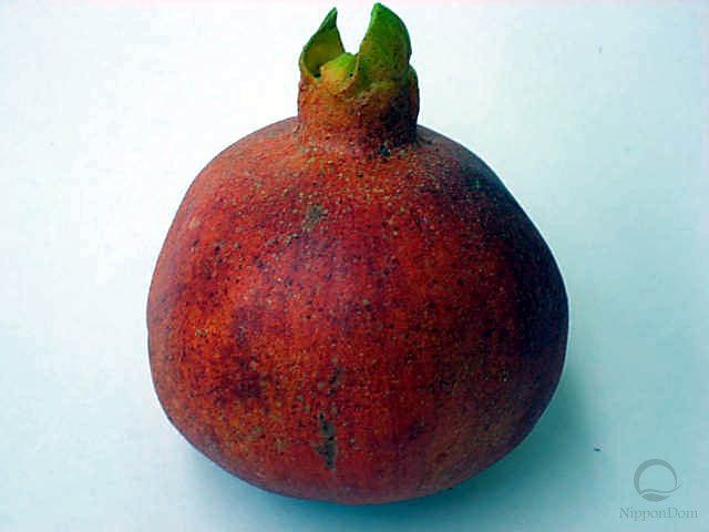 Pomegranate (medium)