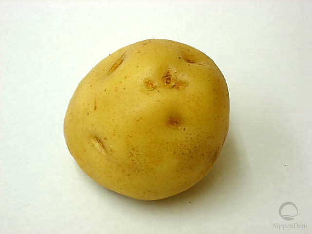 Potato (95/88mm)