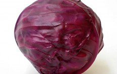 Red cabbage (110/110mm)