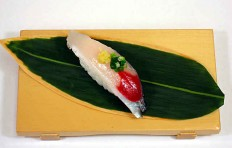 Replica of sushi Saury (12)
