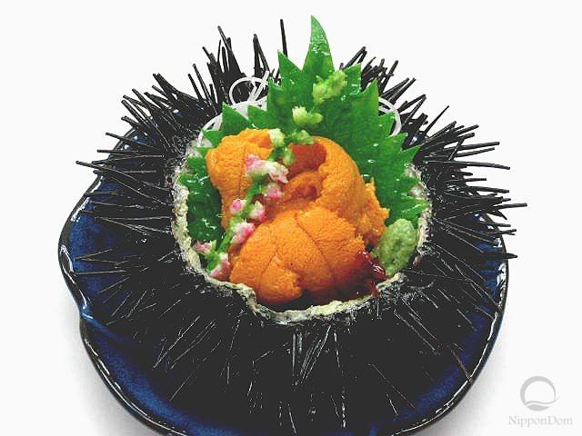 Sea urchin roe-2