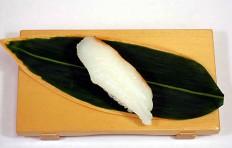 Replica of sushi Seabass