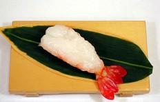 Shrimp-12