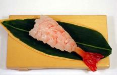 Shrimp-13