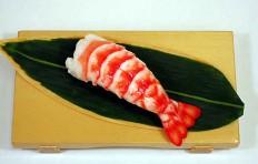 Shrimp-4