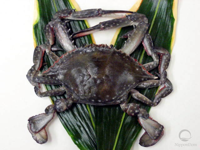 Small blue crab (raw)
