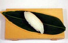 Replica of sushi Small seabass