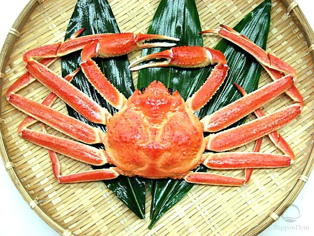 Small snow crab (boiled)