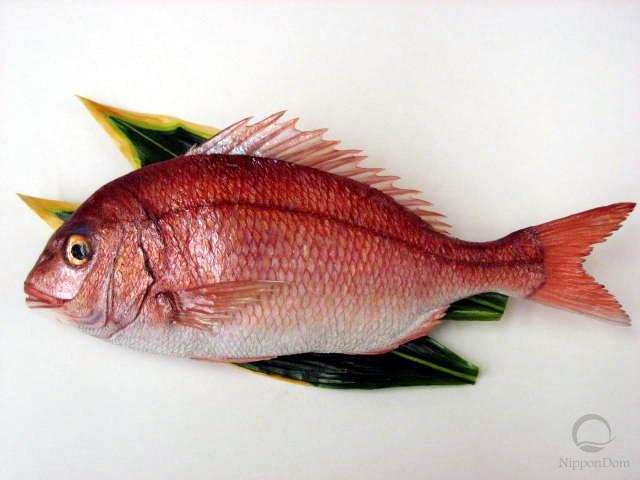 Snapper (38 cm)