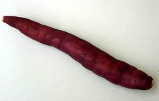 Sweet potato (thin)