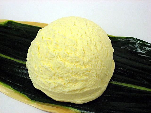 Vanilla ice cream (14)