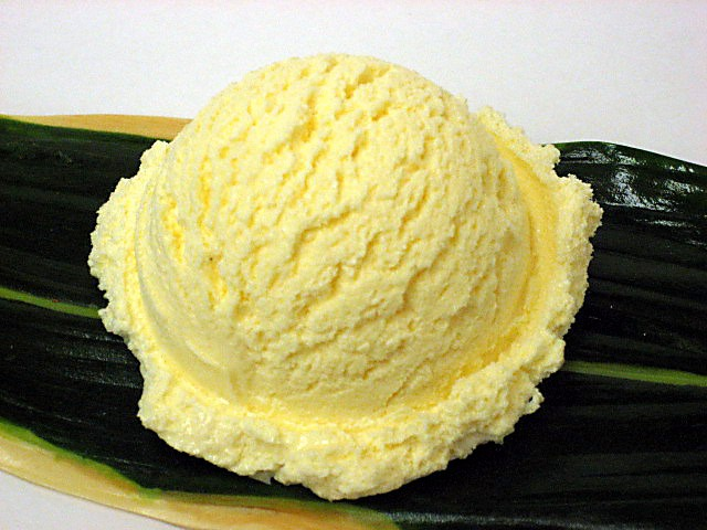 Vanilla ice cream (16)-2