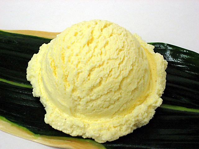 Vanilla ice cream (16)-3