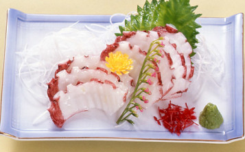 Plastic replicas of dishes - Raw fish